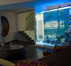 Акриловые аквариумы на заказ Aquarium, Ocean, The Ocean