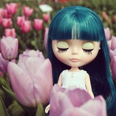 Tulip and blythe