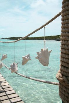 I so have to try this! hanging sea shells. I'd like to take this a little further by making a headboard w/ rope on posts.