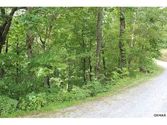 first15!7.26 acres in the heart Wears Valley. This is two separate parcels that can be built on! Brandon Williams Your Agent in the Smokies! REALTOR® / Affiliate Broker License # 302107 Brandon@youragentinthesmokies.com www.youragentinthesmokies.com 865-806-9005 Mobile 865-908-4567 Office  865-280-1433 Fax 400 Park Rd, Suite 209 Sevierville, TN 37862