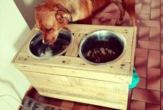 Pallet Dog Food Bowl - Pallet Dog Feeders - 45 Easiest DIY Projects with Wood Pallets, You Can Build - Page 4 of 5 - Easy Pallet Ideas Small Woodworking Projects, Wood Projects That Sell, Wooden Pallet Projects, Pallet Crafts, Easy Diy Projects, Project Ideas, Woodworking Quotes, Woodworking Furniture, Woodworking Plans