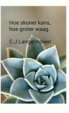 Afrikaans, Illusions, Poetry, Quotes, Quotations, Poetry Books, Optical Illusions, Quote, Poem