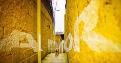 Boamistura // Participative Urban Art project in Vila Brâsilandia // Luz nas Vielas, São Paulo #street #love