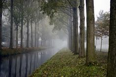 ~ Living a Beautiful Life ~ misty