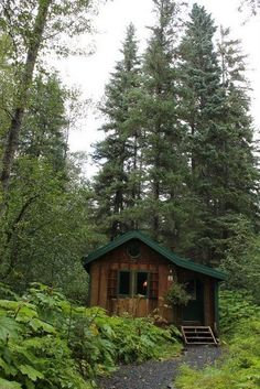 Seward, Alaska. Abode Well Cabins Also a part of Seavey's Ididaride Sled Dog Tours, in a beautiful part of the forest near the Dog Lot <33