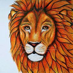 #milliemarotta #wildsavannah #milliemarottaeildsavannah #lion #coloring #coloringbook #milliemarottacoloringbook
