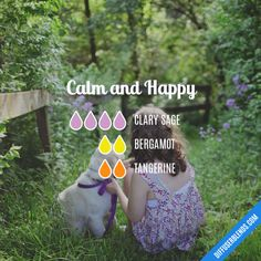 Calm and Happy - Essential Oil Diffuser Blend