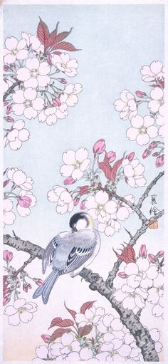 Tit among Cherry Blossoms Jō (Japanese) Japan, 20th century Prints; woodcuts Color woodblock print Image: 14 3/16 x 6 7/16 in. (36.0 x 16.4 cm); Paper: 15 11/16 x 7 3/4 in. (39.8 x 17.7 cm) Gift of Mr. and Mrs. Felix Juda (M.73.37.510) Japanese Art