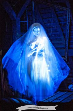 From my blog: www.incindysshoes.com. My favorite ride at the Magic Kingdom in Walt Disney World, The Haunted Mansion. Constance, the bride in the attic scene.