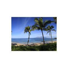 Palm Trees on the Beach, Maui, Hawaii, USA Photographic Wall Art Print ($40) ❤ liked on Polyvore featuring home, home decor, wall art, beach scene wall art, beach wall art, beach home decor, photography wall art and photographic wall art