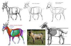 http://1.bp.blogspot.com/-4bHyhsxwF04/T6sifsjiIhI/AAAAAAAAHI8/7z2hkdMtFR4/s1600/goats.jpg