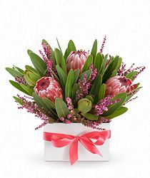 Flowers Adelaide - EASYFLOWERS Adelaide online florist, delivers fresh flowers with same day flower delivery to Adelaide and all surrounding areas. Flowers Australia, Online Florist, Arte Floral, Fresh Flowers, Flower Arrangements, Wedding Flowers, Projects To Try, Plants, Videos