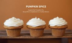 Crave Cupcakes - Baking Simple Sweet Indulgences From Scratch Baking Cupcakes, Fun Cupcakes, Pregnancy Cravings, Feng Shui, Pumpkin Spice, Vanilla Cake, Family Meals, Cake Recipes, Pride