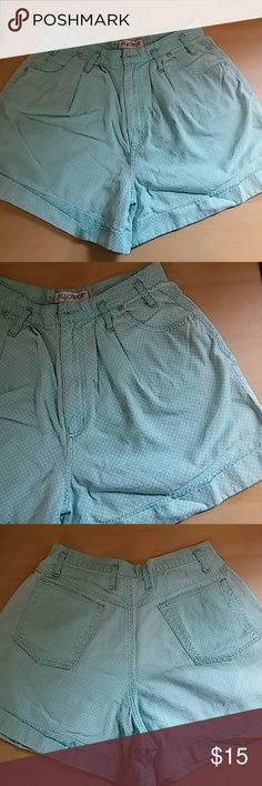 Vintage Mint Green Polka Dot High-Waisted Shorts These vintage shorts are mint green with white polka dots. They are so cute with no stains or holes. Sadly they don't fit me anymore. Shorts Skorts