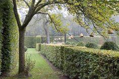 Via gardenista
