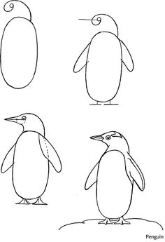 Drawing Techniques How to Draw Birds: Dover Publications Samples - How to draw Penguin Art Drawings For Kids, Bird Drawings, Drawing For Kids, Easy Drawings, Animal Drawings, Drawing Sketches, Pencil Drawings, Sketching, Drawing Birds