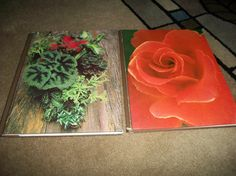 Two Vintage Plant Books Roses and Houseplants Time by ARMonaco9, $15.50    http://www.etsy.com/listing/108542902/two-vintage-plant-books-roses-and?ga_search_query=book