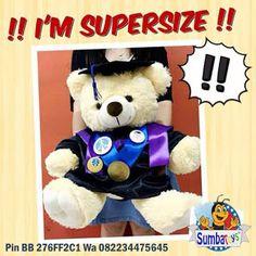 Souvenir boneka teddy bear wisuda : Souvenir Boneka Wisuda Teddy bear Xtra Large  XL