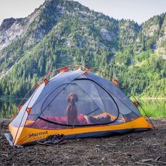 25 Reasons Dogs Make The Best Camping Companions — Camping With Dogs
