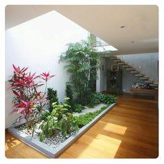 #07M🍂Jardines Internos, la naturaleza como huésped! ▫▪Contacto: 📶GramasdeOcc@gmail.com▫🌅#Maracaibo 🏭#SanFrancisco🚖#CiudadDePanamá 📷Fotografía por WOA. 🔝▫#paisajismo #pedreríamonumental #accesorios #jardinesEspectaculares #arquitectura #portafolio #paisajes #jardines #diseño #decor #instalacion #renovacion #jardinesmodernos #arquilovers #casasmodernas #homestyle #instadecor #indoors #garden #landscaping #zulia #venezuela #panama