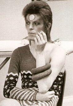 Só deu ele nesta semana. David Bowie é gênio!