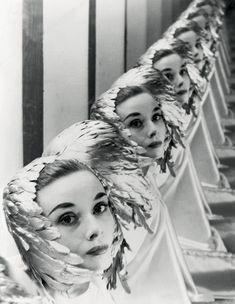 Erwin Blumenfeld, Audrey Hepburn (1952), New York