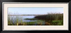 Pond, Half Moon Bay, California, USA Photographic Print by Panoramic Images at Art.com