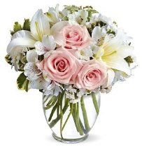 Order flowers online from your florist in New Albany, IN. Nance Floral Shoppe, Inc., offers fresh flowers and hand delivery right to your door in New Albany. Get Well Flowers, Fresh Flowers, Spring Flowers, Lilies Flowers, Flower Bouquets, White Flowers, Mum Bouquet, Bridesmaid Bouquet, Cut Flowers