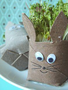 Kresse anpflanzen, Osterhase, basteln mit Toilettenpapierrollen,
