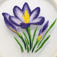brazilian embroidery new designs Hand Embroidery Patterns Flowers, Ribbon Embroidery Tutorial, Hand Embroidery Videos, Embroidery Flowers Pattern, Creative Embroidery, Embroidery Stitches Tutorial, Silk Ribbon Embroidery, Hand Embroidery Designs, Broderie Simple