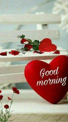 Good Morning Love Text, Good Morning Msg, Good Morning Roses, Good Morning Images Flowers, Good Morning Beautiful Images, Good Morning Images Hd, Good Morning Messages, Good Night Image, Good Morning Greetings