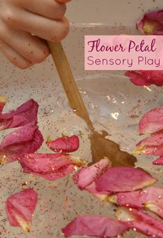 Flower Petal Sensory Play. Fun way to use old flower petals. Great for toddlers and preschoolers!