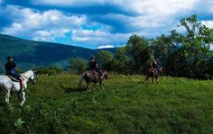 @postcards_to_home. Mountain view Ranch, Vermont. You will never understand the beauty and appreciate the experience until you have gone for yourself. It was one of the best days I have had this year yet. #horsebackriding #mountainviewranch #photography #nikond3200 #nikonnofilter #vermont #field #mountains #beauty #nature #downtoearth #thisialife #travel #explore