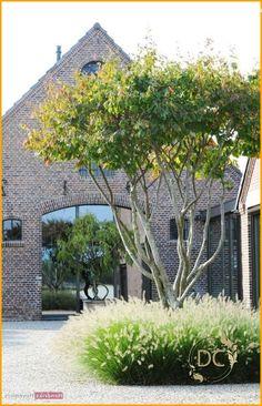 Back Gardens, Outdoor Gardens, Landscape Design, Garden Design, Mailbox Garden, Classic Garden, Front Yard Landscaping, Garden Projects, Garden Ideas