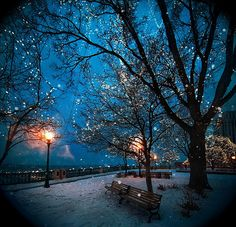 Winter Fairyland - St Paul - Minnesota - USA -  Flickr - Photo Sharing! www.facebook.com/loveswish