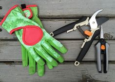 Get going now on these five things you can do to keep your garden tools clean and in shape.
