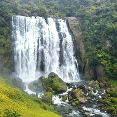 Wandering off the beaten track  #nzwaterfalls #wanderlust #purenewzealand