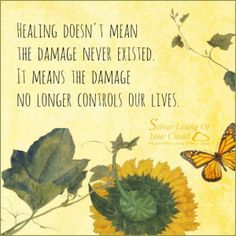 Healing doesn't mean the damage never existed. It means the damage no longer controls our lives. _More fantastic quotes on: https://www.facebook.com/SilverLiningOfYourCloud  _Follow my Quote Blog on: http://silverliningofyourcloud.wordpress.com/