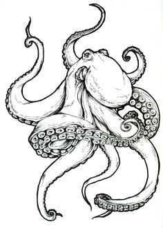 Octopus tattoo, Meagan Glennon - I have tattoo design for a friend . - Octopus tattoo, Meagan Glennon – I made tattoo design for a friend – - Octopus Tattoo Design, Octopus Tattoos, Octopus Art, Octopus Sketch, Octopus Illustration, Squid Tattoo, Easy Octopus Drawing, Octopus Tentacles Drawing, Kracken Tattoo