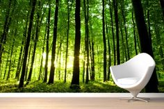 Breaking Light Green Forest Mural Wallpaper