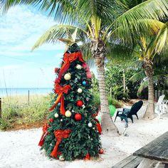 Florida hat übrigens noch Weihnachten  by bilderzimmer | The Beaches of Fort Myers Sanibel