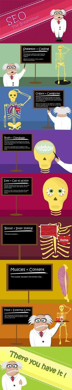 SEO The Breakdown -Infographic