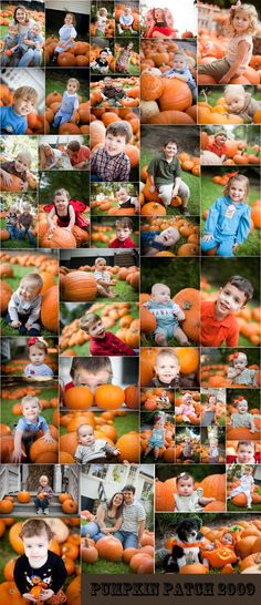 Pumpkin Patch Mini Session Collage » Crystal Garcia Photography