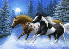 Appaloosa-paint-pinto-horse-winter-snow-moon-limited-edition-aceo-print-art