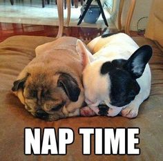 Sleep well little buddy! :)  We hope that everyone had a GREAT Wednesday!