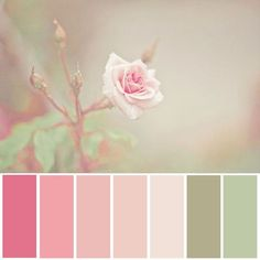 Pinks & Greens... love this color scheme ;)