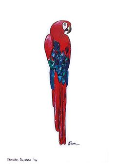 Catchii illustration, drawing, parrot, red, blue, back
