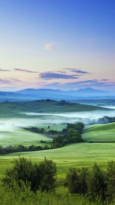 Green-Nature-Field-Italy-iPhone-wallpaper - iPhone Wallpapers