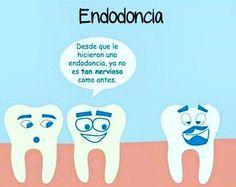 #poladent #odontologia #odonto #odontolove #medicina #casadental #salud #distribuidorautorizado #atencionpersonalizada…