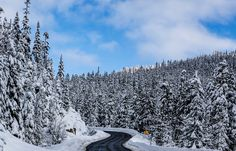 winding winter backroad way past Whistler by markbowenfineart #nature #mothernature #travel #traveling #vacation #visiting #trip #holiday #tourism #tourist #photooftheday #amazing #picoftheday